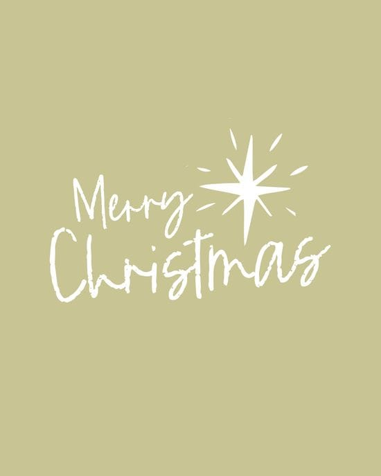 Merry Christmas from Newcastle Integrated Physiotherapy