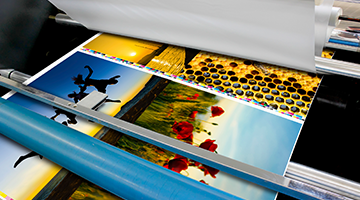 Print Services in Auckland | Snap New Zealand
