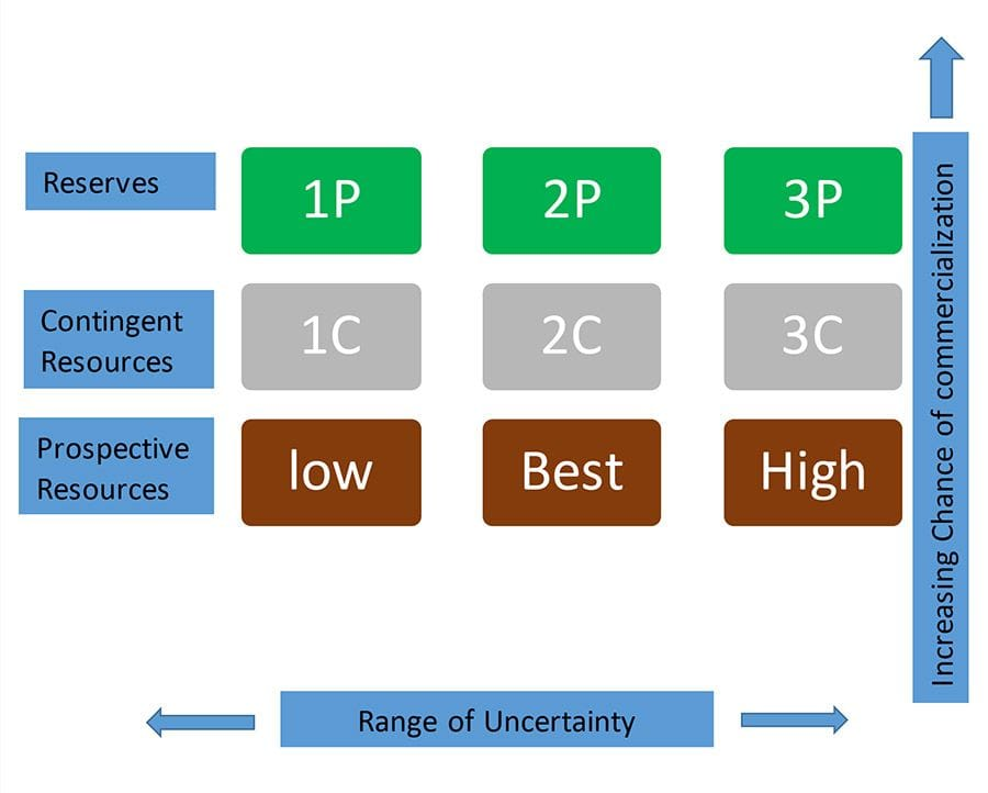 Neon-Blu Oil & Gas Consulting Reserves Forecasting Assessment