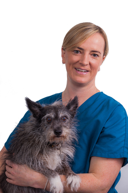 Dr Ellie Leister | Veterinary Emergency and Critical Care | VSS