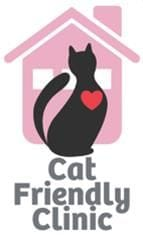 Cat Friendly Clinic in Underwood   Cat Vet Brisbane