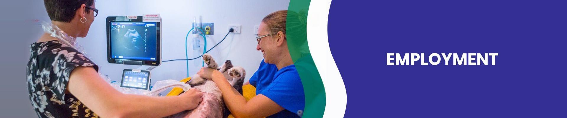 Veterinary Nurse at VSS Carrara | Veterinary employment opportunities
