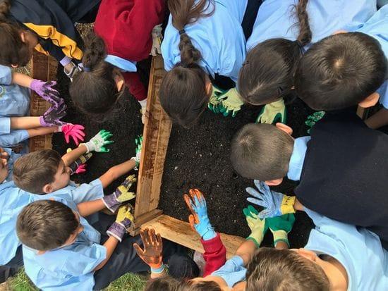Kindergarten - Term 2