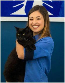 Meet Natasha, a Veterinary Nurse of Terrigal Vet