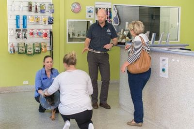 Terrigal vet recommends pre-anaesthetic testing to minimise the risk to your pet