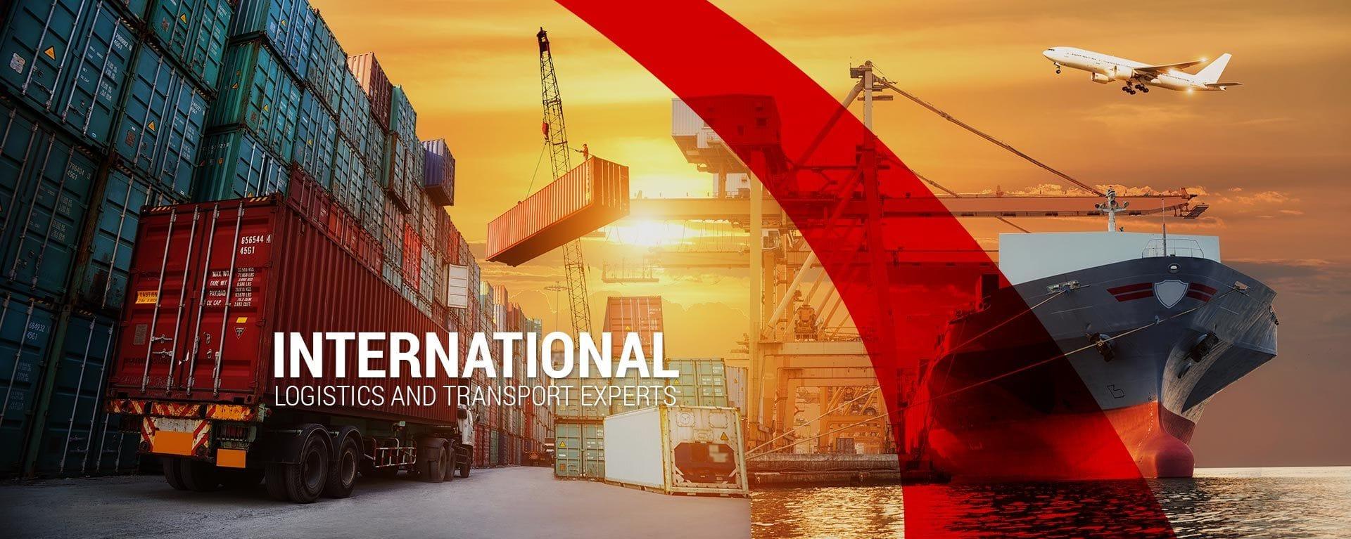 Scorpion International International Logistics and Transport experts