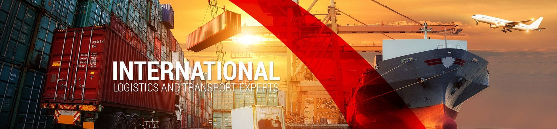 Scorpion International International Logistics and Transport Experts