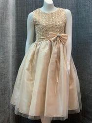 Floral Ribbon Swirl Dress- CHAMPAGNE