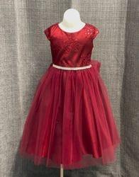 Burgundy Embroidered Floral Sparkle Dress