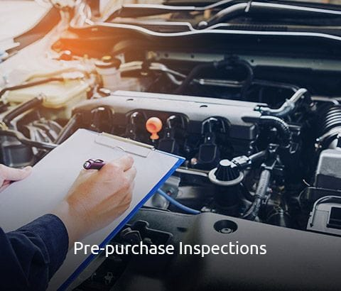 Pre-Purchased Inspections