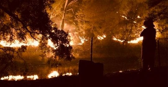District 9800 Response to the Bushfires