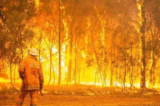 Supporting Bushfire Relief
