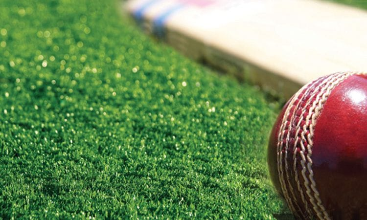 Synthetic Grass and Rubber | Synthetic Grass Cricket