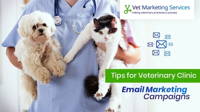 Tips For Your Vet Clinic's Email Marketing Campaign