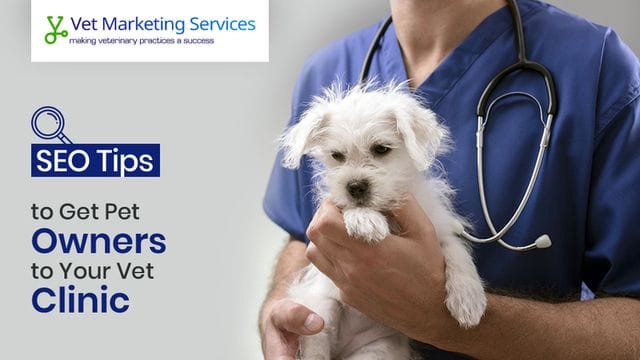 Get Local Pets to Your Clinic With Local SEO