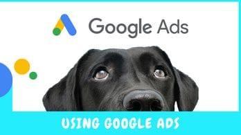 6 Reasons Australian Vets Should Use Google Ads