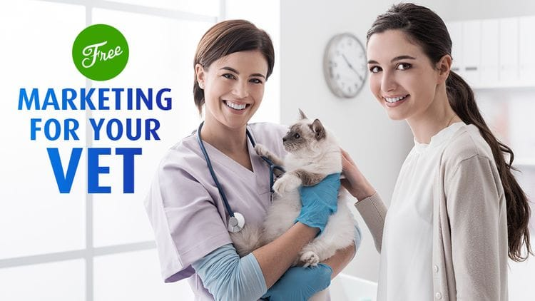 3 Easy Ways to Market Your Vet For Free