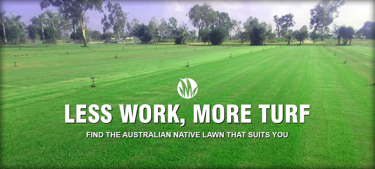 Acacia Turf Farm less work more turf