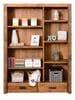 Cassie Large Bookcase Thumbnail Main