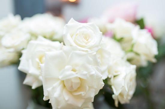Small Talk: An Interview with Aspen Florist