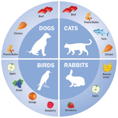 Veterinary medication flavours for pets