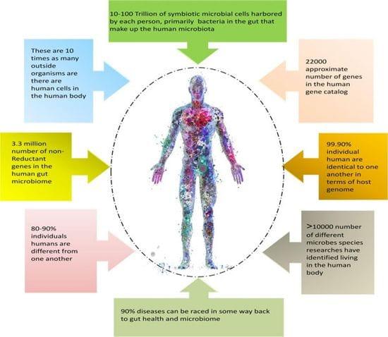 Cross-Talk: Microbiome & Immune System Balance