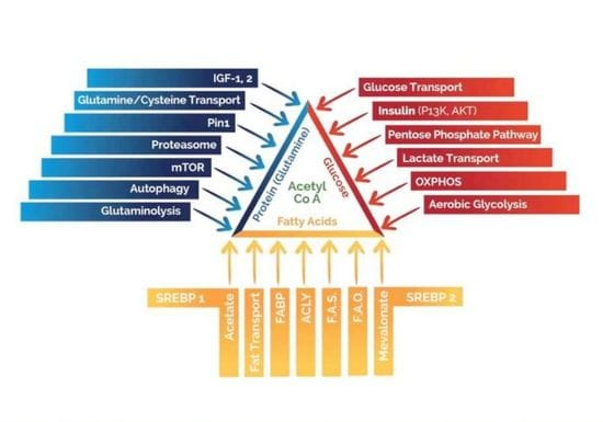 How many pathways are used by cancer cells?