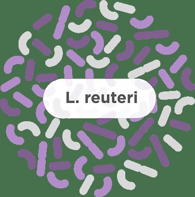 Probiotic Add-On Eased GI Symptoms of H. Pylori