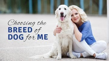 How to Choose the Right Breed of Dog for You