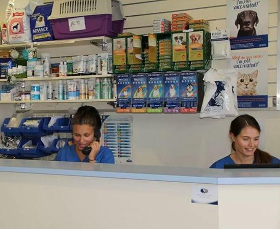 Elsternwick Vet | North Road Veterinary Centre