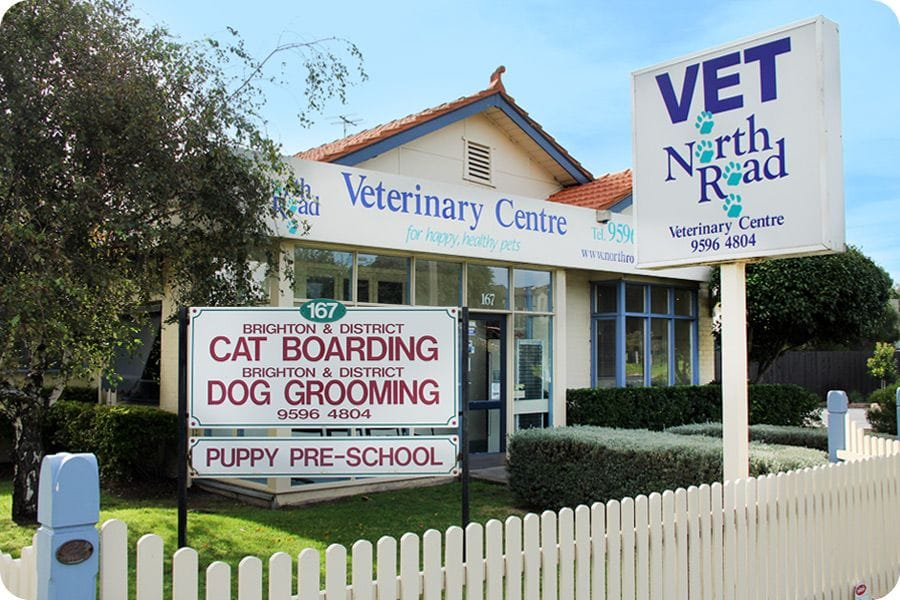 North Road Veterinary Centre in Gardenvale