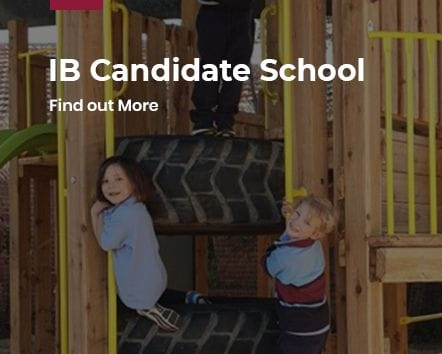 IB Candidate School