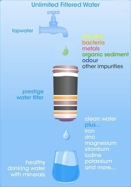 Filter Bottle with Filter Cartridge