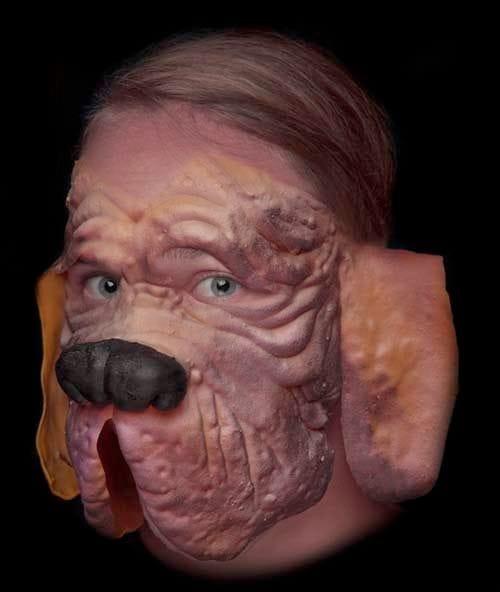 Dog (Hound Dog)