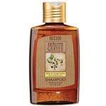 Birch & Basswood Shampoo for Oily Hair 200ml