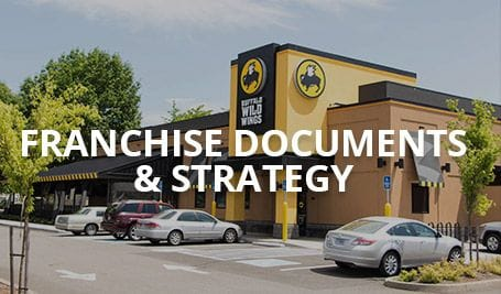 IP Partnership Franchise Documents & Strategy