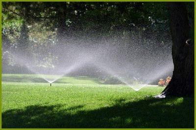 Irrigation Advice