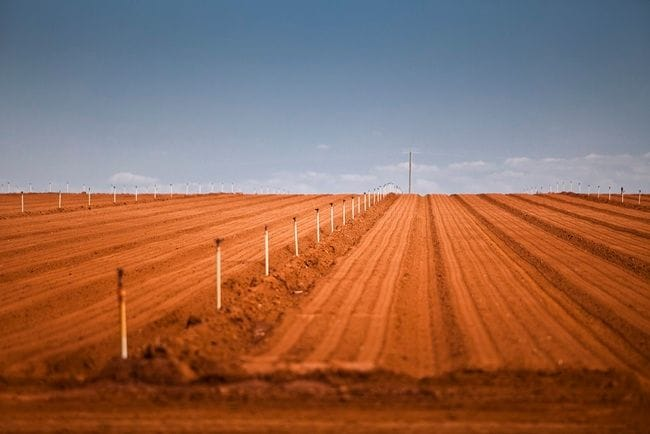 Sunraysia farm sells for $11.5 million