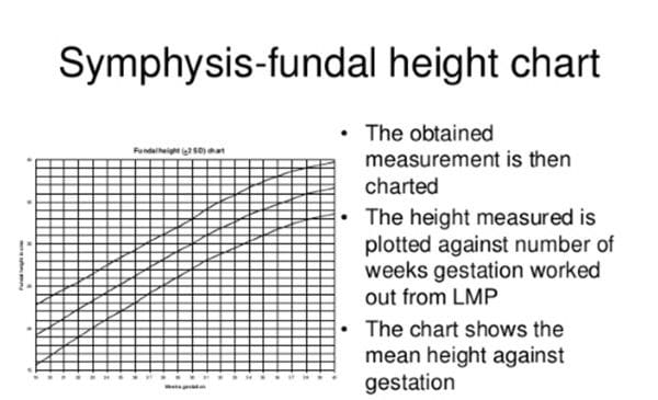 Symphysis-fundal height chart