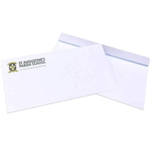 DL Envelopes Plain