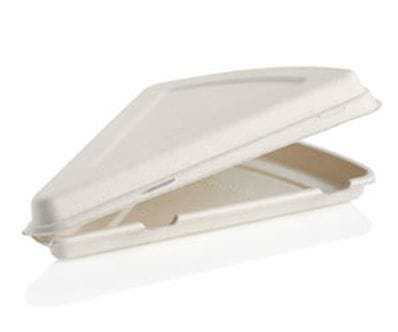 "280x163x40mm / 9""Pizza Slice Clamshell"