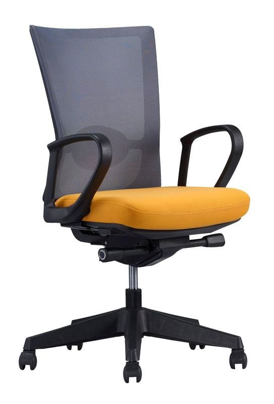 Forte chair