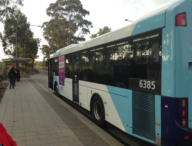 NEW BUS SERVICES KEEP ROLLING OUT IN WESTERN SYDNEY