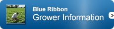 Blue Ribbon Grower Information