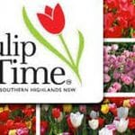 Tulip Time in the Highlands - September - October