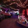 Hunter Valley Gardens Christmas Lights 2018-2019 Public Day Night Tour