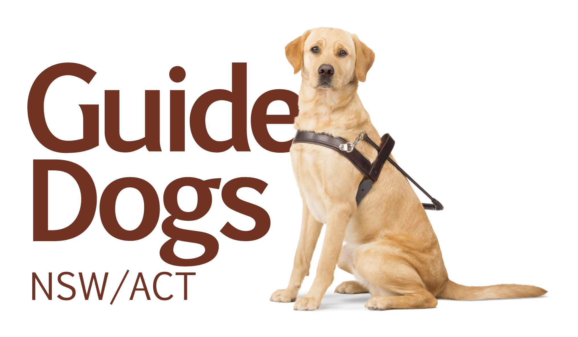 Guide Dogs - Public Day Tour
