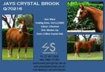 JAYS CRYSTAL BROOK - SOLD