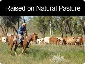 Raised on Natural Pasture