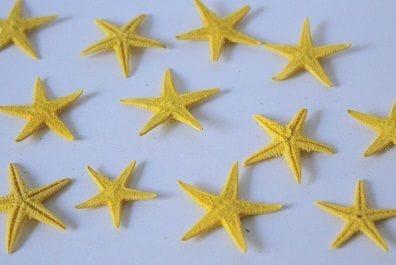 Baby Starfish | 100 Pack | Yellow | 10-18mm